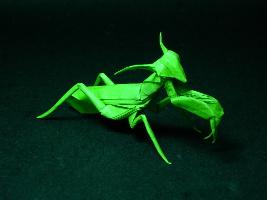 zelená kudlanka složená z papíru