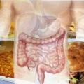 díky konzumaci nezdravého jídla je potřeba očista střev