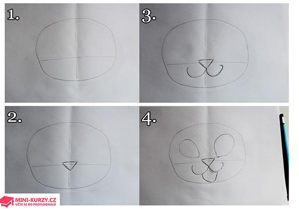Fotografie návodu jak nakreslit kočku