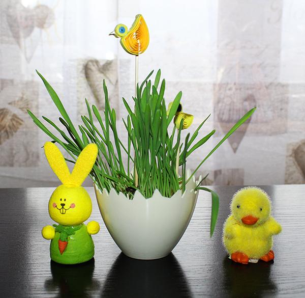 fotografie zasazené travičky s dekorací v podobě kuřete a zajíčka