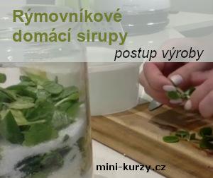 sklenice plná rýmovníkových listů, cukrů a citrónu - úvodní obrázek článku rýmovníkové domácí sirupy - postup výroby
