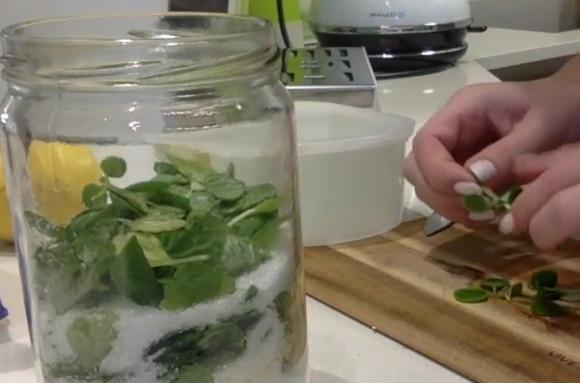ve sklenici jsou vrstvy cukru, listů z rýmovníku a cítrón. Vše na výrobu domácího sirupu z rýmovníku