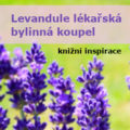 fialové květy levandule - úvodní obrázek k článku Jak na přírodní bylinnou koupel z levandule (web mini-kurzy.cz)