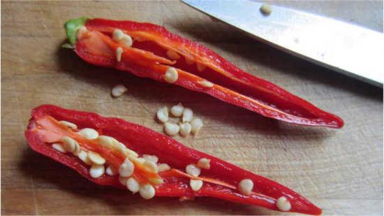 rozkrojená chilli paprička se semínky připravená na zpracování