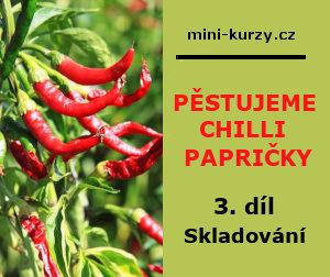 doma pěstované chilli papričky - úvodní obrázek článku na téma jak sušit a mlít chilli papričky
