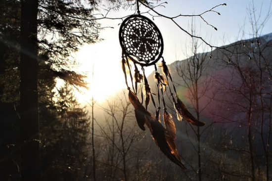 lapač snů visí na stromě a vlaje ve větru