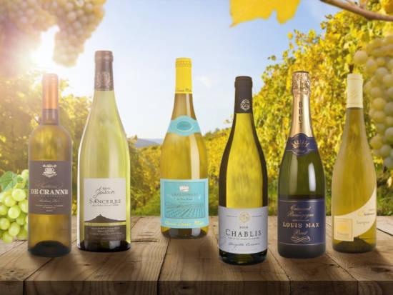 Sedm lahví Riesling vín stojí na stole a čekají na domácí zážitkovou degustaci
