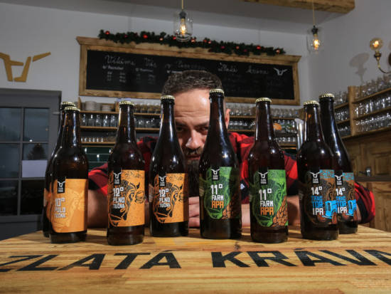Sedm lahví piva z pivovaru Zlatá kráva stojí na stole a čekají na domácí zážitkovou degustaci