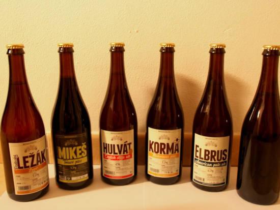 Sedm lahvových piv pivovaru Podlesí čekají na domácí zážitkovou degustaci