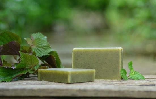 zelené mátové doma vyrobené mýdlo a vedle něj leží bylinky